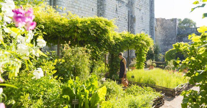 Jardin médiéval au pied du donjon de Loches